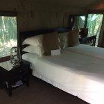 My tent room