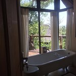 Impodimo Game Lodge Picture