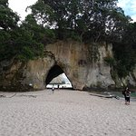 Photo de Cathedral Cove Walk