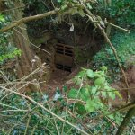 Old Ham Mine - The Way In.