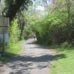 Curtis Trail