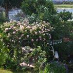 Le jardin sur les bords du Cher