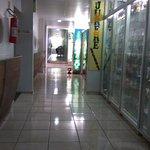 Zdjęcie 1160341