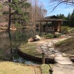 Japanese garden area.