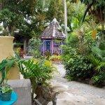Inside Tillett Gardens