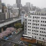 Foto di City Plaza Osaka