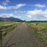 Photo of Hauraki Rail Trail - Day Rides