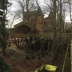 View of treehouse from rope bridge