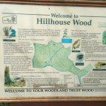 Hillhouse Wood
