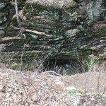 Pewit's Nest Gorge Foto