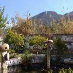 Photo of Amalurra Granada