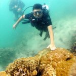 easy diving