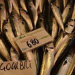fresh seafood @ Rialto Market