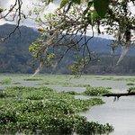 Photo of Orosi River Valley  ( El Valle del Rio Orosi )