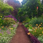 Photo of Palheiro Gardens