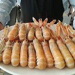 Uno spettacolare incrocio tra la tradizione culinaria marinara, e la sperimentazione azzardata e