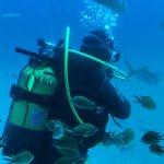Foto de Submarine Safaris SL