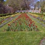 Formal Gardens Left Side Spring 2017
