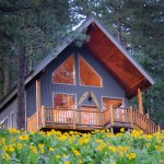 Cabin Ponder Rock with Balsam Root Wildflowers