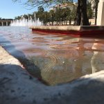 Photo de Antiguo Cauce del Rio Turia