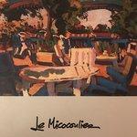 Photo de Le Micocoulier