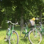Our bikes, while we had a picnic on the Grand Canal