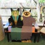 Kitty bench