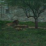 Photo of Jardin Zoologique National de Rabat