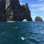 Foto de Fullers GreatSights Bay of Islands Day Tours