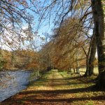 The Beech Avenue - Achnacarry walks