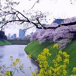 Photo of APA Hotel Tokyo Kiba