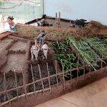 Foto de Sigiriya Museum