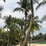 Photo of Palawan Beach