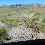 Photo of Farm Il Casale delle Rose