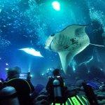 Photo de Big Island Divers