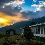 Foto de Glenburn Tea Estate