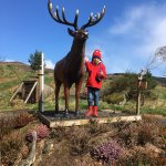 Cameron with the King of the Herd. It's a real one, honest.