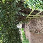 The Saxon Mill