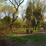 Foto de Park Ujazdowski