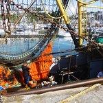 Working trawlers ..