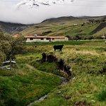 Photo of Casa Condor