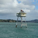 Photo de Fullers Auckland Harbour Cruise