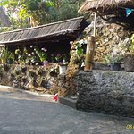 Mayal Lyang Homestay Photo