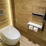 Fancy toilet with fancy bidet (with wireless remote control!)
