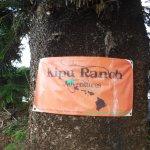 Photo de Kipu Ranch Adventures