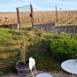 Photo of Au Coeur des Vignes