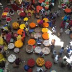Flower market in Bangalore, taken by our wonderful Bluefoot tour guide
