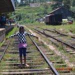 Trian Train come again little Thiumi wants to  go....