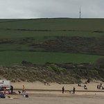 Beachgoers and sheep
