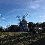 Higgins Farm Windmill view from parking lot